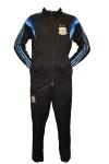 Спортивный костюм Аргентина 2014